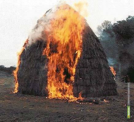 Тамбовчанка сожгла соседское сено