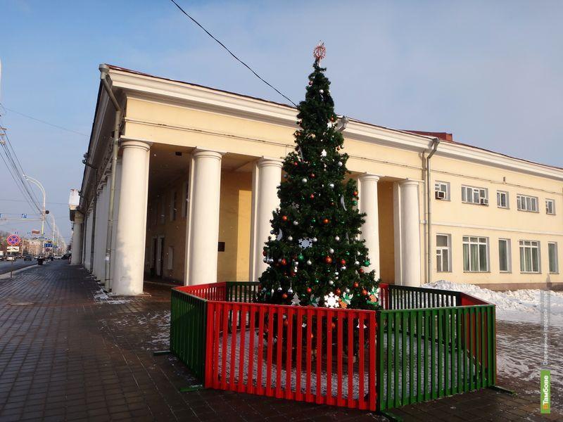 В Тамбове украсили первую городскую елку
