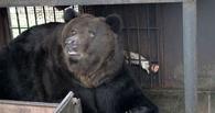 Обитатели зоопарка ТГУ не торопятся уходить в спячку