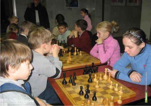 Юная тамбовчанка выиграла шахматное первенство Европы