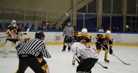Тамбовские хоккеисты скрестят клюшки c «Ямальскими Стерхами»