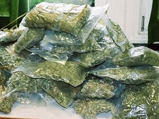 Котовские полицейские изъяли более 5 килограммов наркотиков