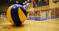 ВК «Тамбов» назначили исполняющего обязанности главного тренера