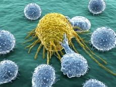Японцы создали Т-лимфоциты против рака