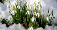 Весна придет в страну не раньше 23 марта