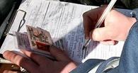Тамбовские автолюбители задолжали по штрафам более 19 миллионов рублей