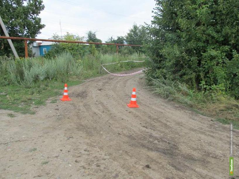 Пьяный водитель грузовика насмерть задавил 4-летнюю девочку