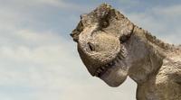 В США арестовали контрабандиста динозавров