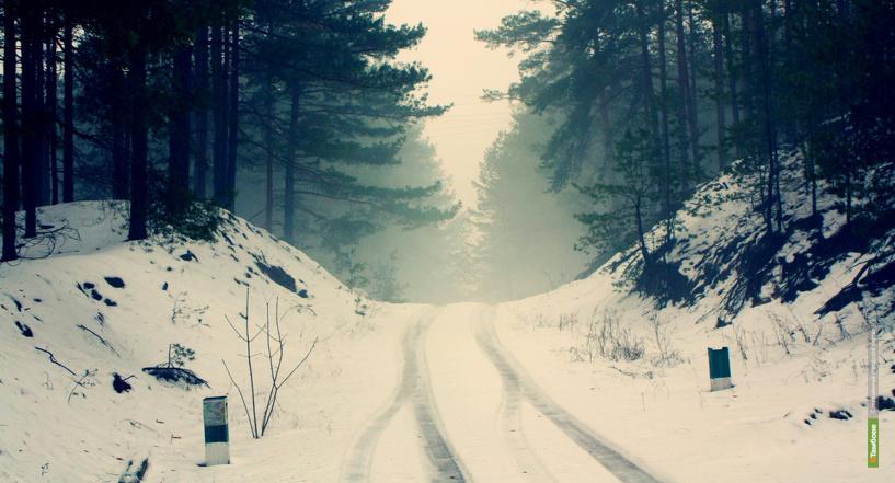 Выходные ВТамбове: Мороз веселью не помеха!