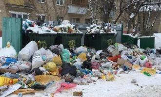 К решению проблемы с вывозом мусора в Тамбове подключились региональные власти
