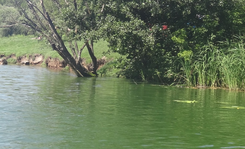 В Знаменском районе утонул мужчина