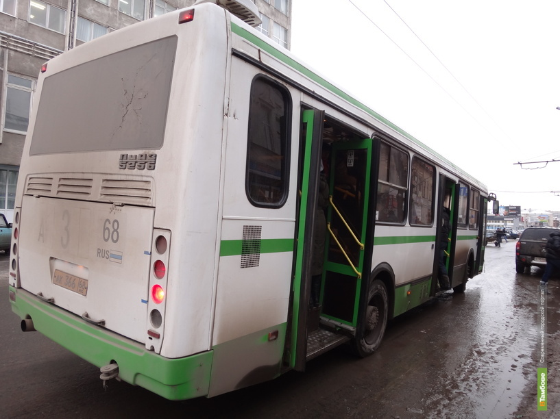 Автобусы в пригородный лес станут ходить реже
