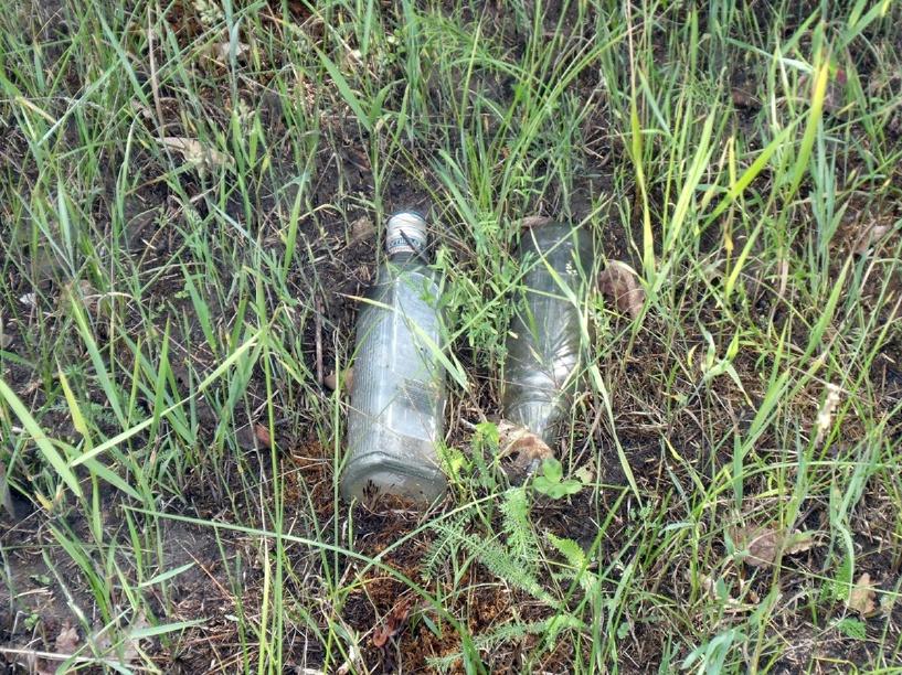 Молодая женщина убила знакомого бутылкой из-под водки
