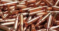 У тамбовского пенсионера изъяли 66 патронов к автомату Калашникова