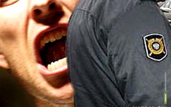 Кирсановца накажут за оскорбление полицейских
