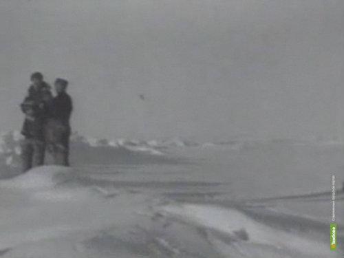 Юные тамбовчане поборются за путевку на Северный полюс