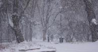 На Тамбов обрушился сильный снегопад