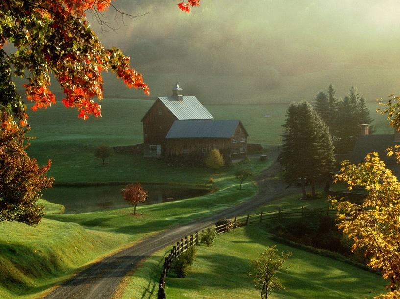 На Тамбовщине определят самую красивую деревню