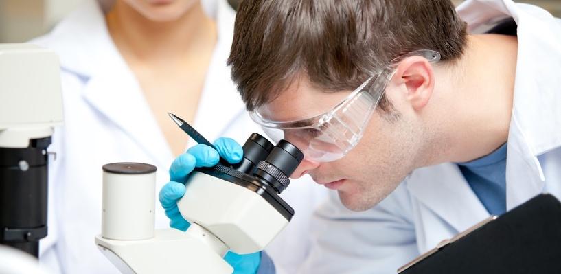 Ученые догадались, в каком органе живёт душа человека