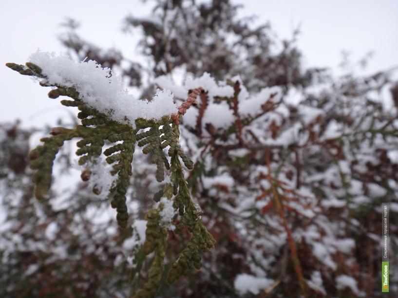 На Тамбов надвигается резкое похолодание