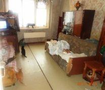Тамбовчанка приютила в однокомнатной квартире 18 кошек и 2 собаки