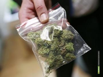 Тамбовские полицейские задержали двух мужчин с марихуаной