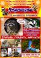 Выставка животных «Джуманджи»