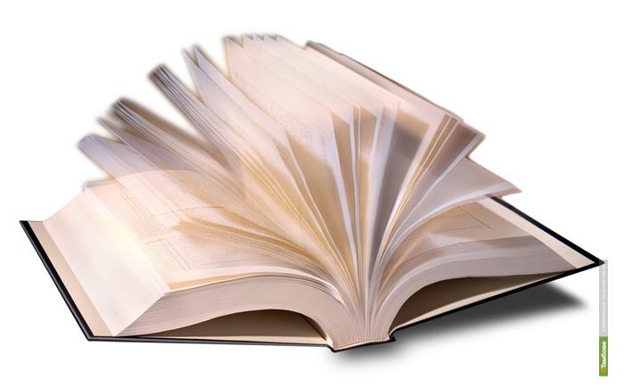 Роман тамбовского писателя выйдет отдельной книгой