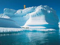 Канада попросит ООН закрепить за ней Арктику и Северный полюс