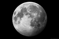 Роскосмос хочет просверлить Луну вместе с европейцами