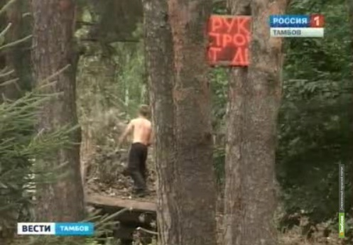 Под Тамбовом неизвестные незаконно рубят лес