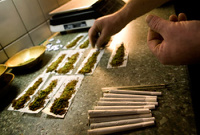 В Колумбии легализуют наркопритоны