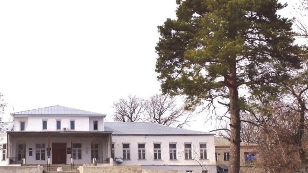 155-летняя сосна из Тамбовской области претендует на звание главного дерева России