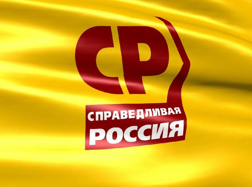 «Справедливая Россия» предлагает тамбовчанам самим выдвинуть кандидата в депутаты Гордумы