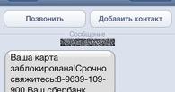 Телефонные аферисты выманили у тамбовчанки более 100 тысяч рублей