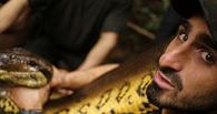 Репортаж из желудка анаконды: журналист из США рассказал о пребывании внутри рептилии