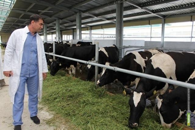 Тамбовские власти обещают поддержку местным фермерам