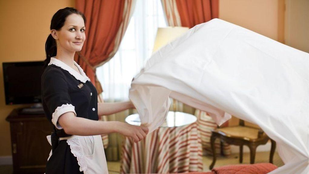 22% тамбовчан хотели бы нанять домработницу, но её услуги пока не по карману