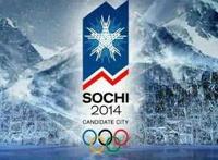 Продажа билетов на Олимпиаду обойдется спекулянтам в миллион рублей