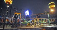 Новогодняя поляна приглашает тамбовчан на своё официальное закрытие