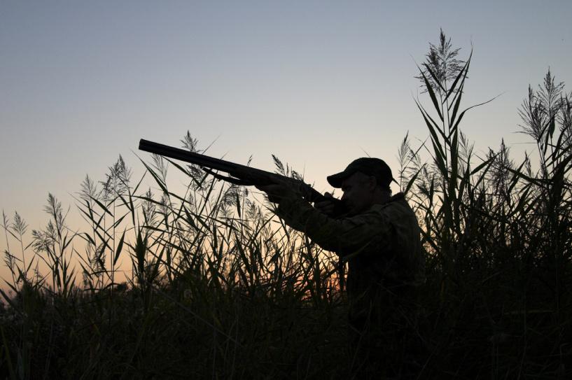 Теперь подать заявление на получение охотбилета можно не выходя из дома