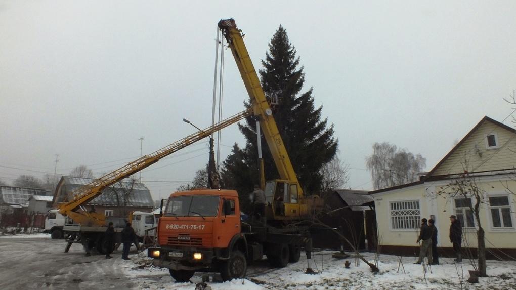 Житель Моршанска подарил городу 15-метровую ель