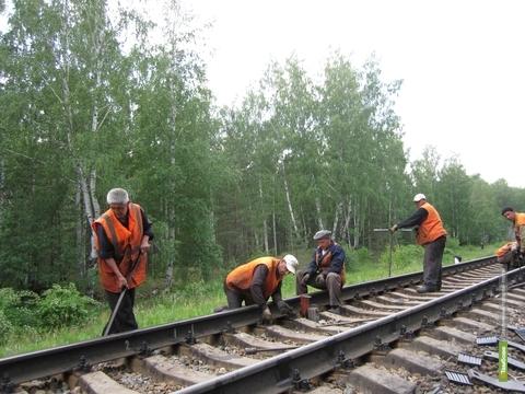 На Тамбовщине трудятся более 7 тысяч легальных мигрантов