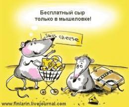 "Тамбовчанин перевел мошенникам через ""Western union"" 8500 долларов"