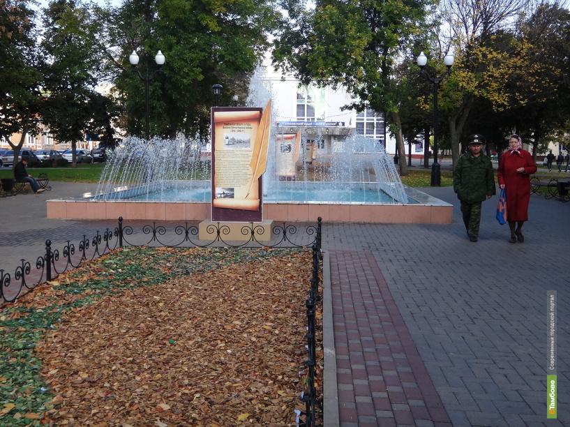 Тамбовские власти нашли бюджетный вариант украшения клумб