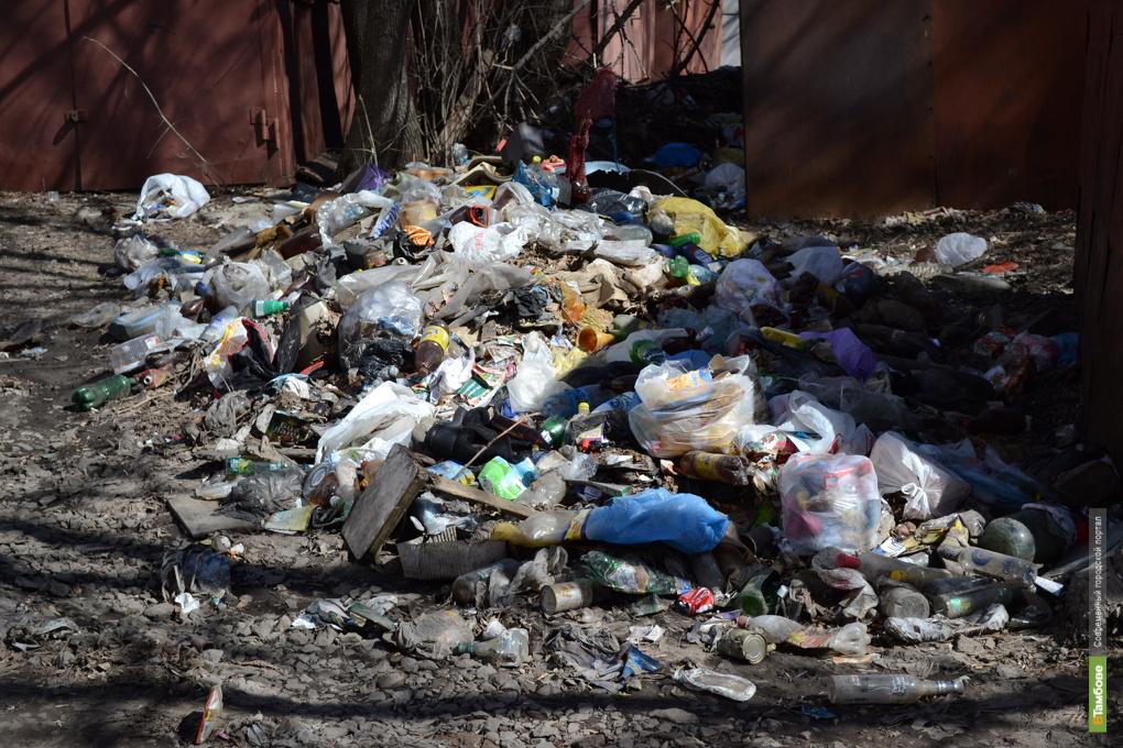 Казаки не позволят тамбовчанам разбрасывать мусор
