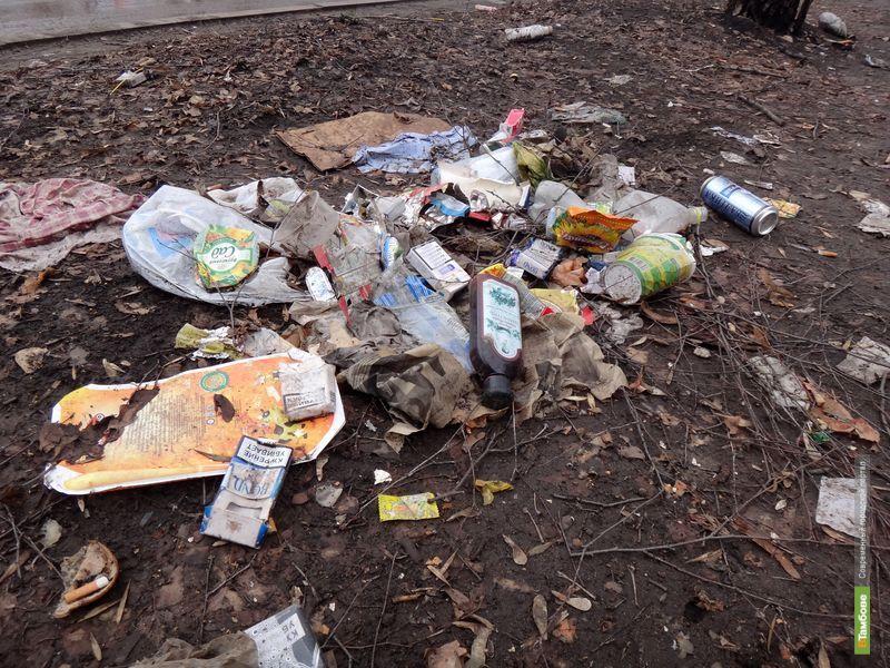 Ко Дню города Тамбов сделают идеально чистым