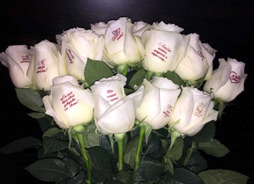 Открытки белые розы для любимой жены, картинки парню