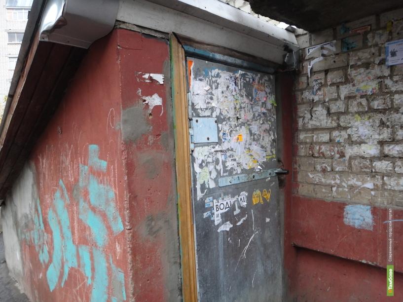 Подвал тамбовской пятиэтажки атаковали вредные насекомые