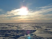 Канада заявила, что может и будет сотрудничать с Россией в Арктике
